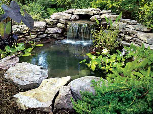 20 fantastic diy backyard projects for Diy outdoor fish pond