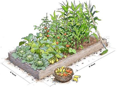 How To Build A Raised Planting Bed | Apps Directories